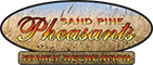 Sand Pine Pheasants