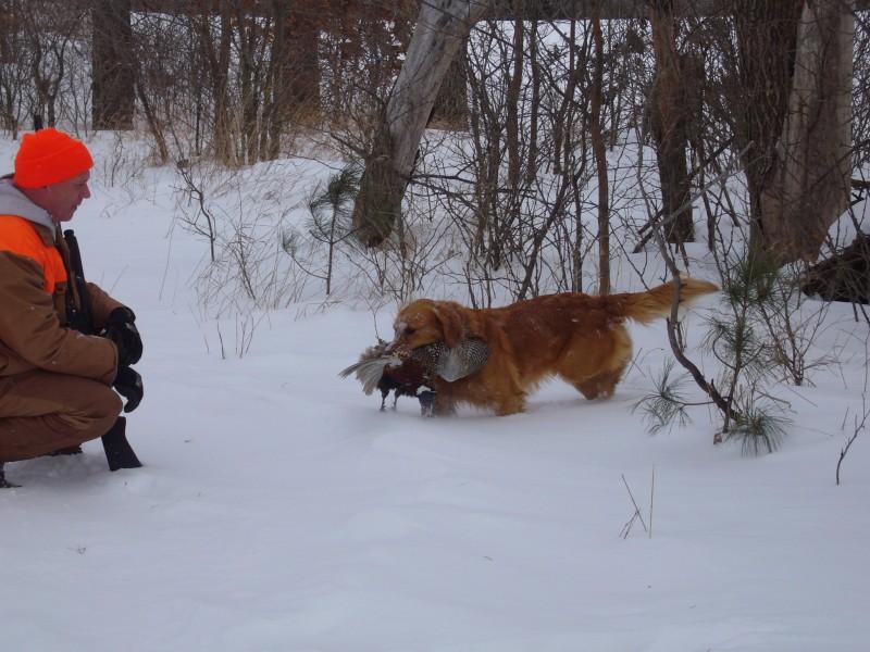 Hunting Image